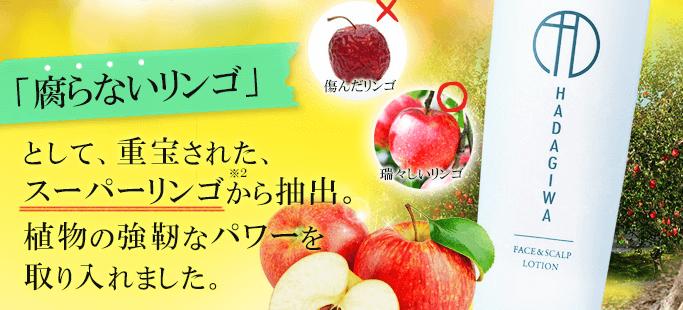 リンゴエキス